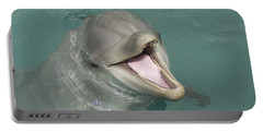 Portable Battery Charger featuring the painting Dolphin by Sean M