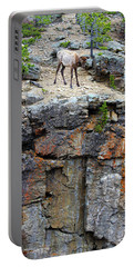 Portable Battery Charger featuring the photograph Don't Jump by Shane Bechler