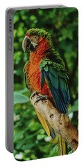 Portable Battery Charger featuring the photograph Don't Ruffle My Feathers by Marie Hicks