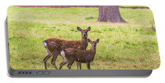 Portable Battery Charger featuring the photograph Double Take by Scott Carruthers