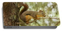Douglas Squirrel Portable Battery Charger by Sean Griffin