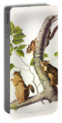 Douglass's Squirrel Portable Battery Charger