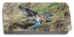 Portable Battery Charger featuring the photograph Down For The Count by Mike Dawson