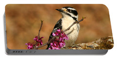 Downy Woodpecker In Spring Portable Battery Charger