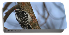 Downy Woodpecker Portable Battery Charger by Living Color Photography Lorraine Lynch
