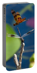 Dragon Fly 195 Portable Battery Charger by Michael Fryd