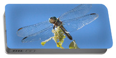 Dragonfly 2 Portable Battery Charger