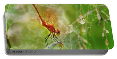 Dragonfly Dance Portable Battery Charger