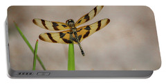 Dragonfly On Grass Portable Battery Charger