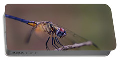 Dragonfly On Twig Portable Battery Charger