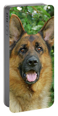 Portable Battery Charger featuring the photograph Drake by Sandy Keeton