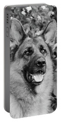 Portable Battery Charger featuring the photograph Drake Watching by Sandy Keeton