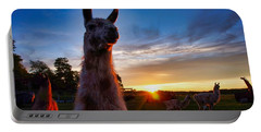 Drama Llamas Portable Battery Charger
