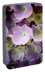 Portable Battery Charger featuring the photograph Dreamy Hydrangea by Mimulux patricia no No