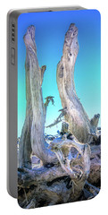 Driftwood Beach  Portable Battery Charger