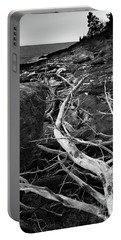Driftwood Tree, La Verna Preserve, Bristol, Maine  -20999-30003 Portable Battery Charger