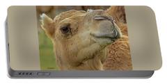 Dromedary Or Arabian Camel Portable Battery Charger