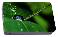 Portable Battery Charger featuring the photograph Droplets On Stem And Leaves by Darcy Michaelchuk