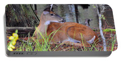 Portable Battery Charger featuring the photograph Drowsy Deer by Al Powell Photography USA