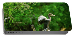 Drying Indian Cormorant Portable Battery Charger