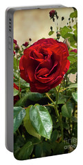 Dublin Bay Climbing Rose Portable Battery Charger
