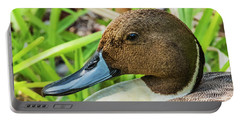 Portable Battery Charger featuring the photograph Male Northern Pintail In Key West by Bob Slitzan