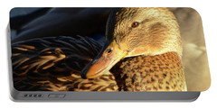 Duck Sunbathing Portable Battery Charger