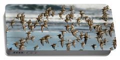Dunlin Flock Portable Battery Charger