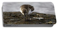Dunlin On The Mudflat Portable Battery Charger