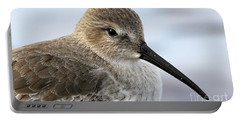 Dunlin Sandpiper Beauty Portable Battery Charger