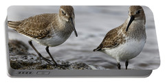 Dunlin Sandpipers Portable Battery Charger