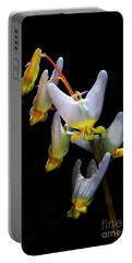 Dutchmans Breeches Portable Battery Charger
