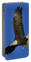Eagle Diving Portable Battery Charger by Coby Cooper