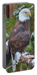 Eagle Glory Portable Battery Charger