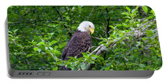 Eagle In The Tree Portable Battery Charger