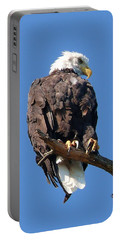 Eagle Lookout Portable Battery Charger