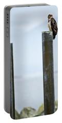 Eagle On A Pole Portable Battery Charger