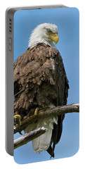 Eagle On Perch Portable Battery Charger