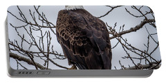 Portable Battery Charger featuring the photograph Eagle Perched by Paul Freidlund