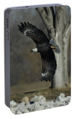 Portable Battery Charger featuring the photograph Eagle Soaring By Tree by Coby Cooper