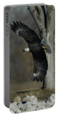 Eagle Soaring By Tree Portable Battery Charger by Coby Cooper