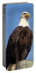 Eagle Standing Proud Portable Battery Charger