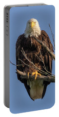 Eagle Stare Portable Battery Charger