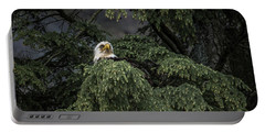 Portable Battery Charger featuring the photograph Eagle Tree by Timothy Latta