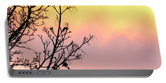 Portable Battery Charger featuring the photograph Early Spring Sunset by Will Borden
