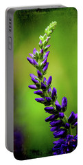 Early Spring Vision Portable Battery Charger by Mike Eingle