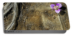 Portable Battery Charger featuring the photograph Earth Memories-desert Flower # 1 by Ed Hall