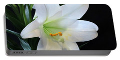 Portable Battery Charger featuring the photograph Easter Lily On Black by Sheila Brown