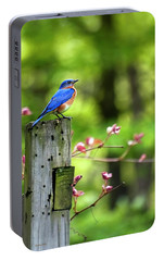 Eastern Bluebird Portable Battery Charger by Christina Rollo