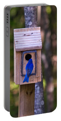 Eastern Bluebird Entering Home Portable Battery Charger